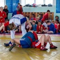 Межрегиональный турнир по самбо. Абакан 12.05.18г. :: Татьяна Золотых