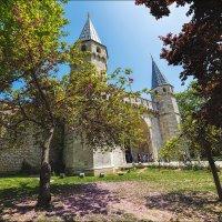 Ворота дворца Топкапы в Стамбуле :: Ирина Лепнёва