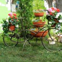 Праздник цветов :: Надежда