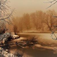 В зимнем тумане :: Вячеслав Маслов