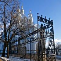 Смольный собор и его ограда :: Елена