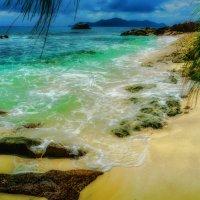 под пальмами на берегу Индийского океана :: Георгий А
