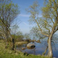 Живописный берег :: lady v.ekaterina