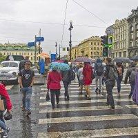 Первый теплый весенний дождь... :: Senior Веселков Петр