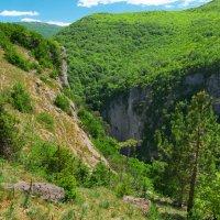 В Крымских горах :: Андрей Козлов
