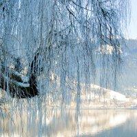 Морозное утро :: nick115
