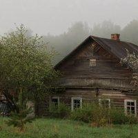 Утро туманное :: Владимир Гилясев