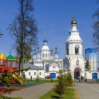 Богородичный Шелговский монастырь, г. Тула :: Георгий