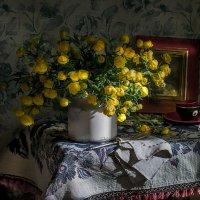 Купавница и солнца луч... :: Bosanat
