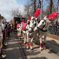 любовь, весна, старый трамвай :: Олег Лукьянов