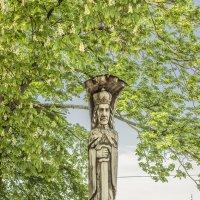 Памятник Великому князю Витовту в Гродно. :: bajguz igor