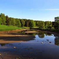 Майский вечер на обмелевшей реке :: Ирина Румянцева