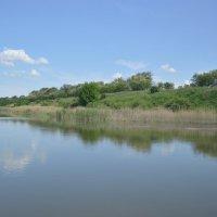 река Сал. :: Виктор