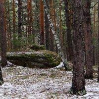 В тайге встречаются такие камни.. :: Елена Тренкеншу