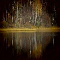 Осень :: Сергей Воронков