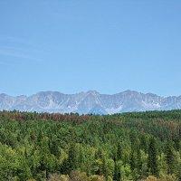 За лесами, за горами ..... :: Николай Танаев