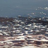 Соленое озеро :: Vlad Сергиевич