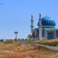 Новая мечеть Ахмеда Яссауи в Туркестане. :: Anna Gornostayeva