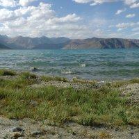 Озеро Пангонг Цо :: Evgeni Pa