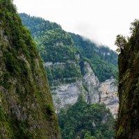 По дороге к озеру Рица через ущелье :: Владимир Пресняков