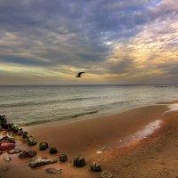 Вечерняя Балтика :: Lusi Almaz