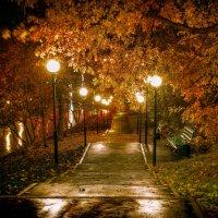 Осень в городе :: Alexandr