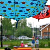 Что нам дождь, что нам зной, когда у нас зонты с собой! :: Татьяна Помогалова