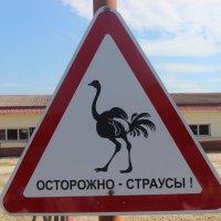 дорожный знак :: Дмитрий Солоненко