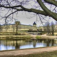 Гатчинский дворец со стороны пруда :: Георгий