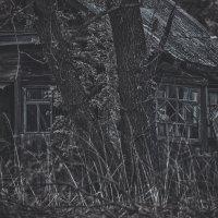 Проклятый старый дом :: Денис