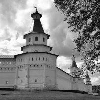 Стены  Воскресенского Ново-Иерусалимского мужского монастыря :: Арина Невская