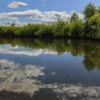 Облака в реке :: Владимир Гришин