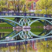 Царицыно, мост :: Петр Беляков