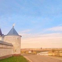 Лужецкий монастырь :: Екатерррина Полунина