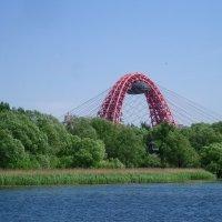 Арка Живописного моста :: Ирина - IrVik
