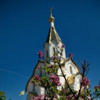 Храмовый комплекс в Катыни. :: Aleksandr Ivanov67 Иванов