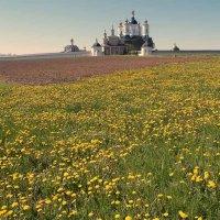 Вид на Свенский монастырь :: Владимир Безгрешнов
