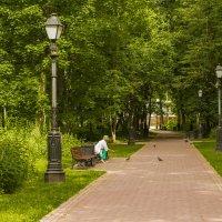 аллея парка :: Петр Беляков