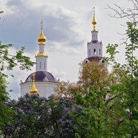 Богоявленский собор :: Елена Кирьянова