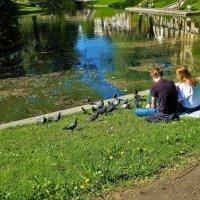 Кормящие голубей... :: Sergey Gordoff