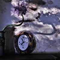 Искривление в пространстве и времени) :: veilins veilins