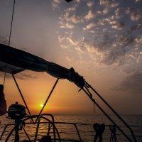 В лучах уходящего солнца... :: Максим Гуревич