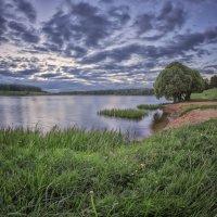 Дичковское озеро. :: Николай Андреев