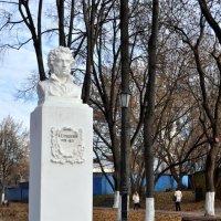 Памятник А.С.Пушкину. :: Лариса Вишневская