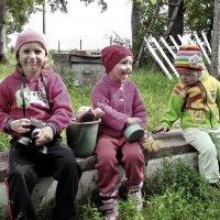 Три сестрички :: Светлана Рябова-Шатунова