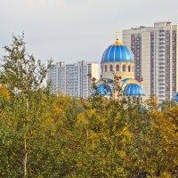 Орехово-Борисово :: Анатолий Цыганок