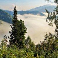 Клубятся в долине туманы :: Сергей Чиняев