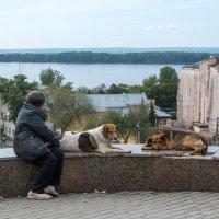 Смотровая площадка :: Олег Манаенков