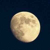 Луна :: ofinogen