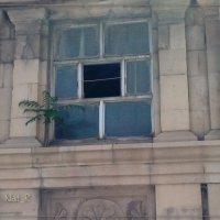 окно старой восточной бани... :: maxim